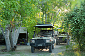 Safari vehicles under the trees in a wildlife reserve camp.