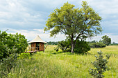 A safari camp, view across grassland and trees and a small pavilion and observation platform on stilts above the grass.