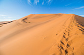 Ascent to the Big Daddy Dune at Sossusvlei in the morning light, Sesriem, Namibia