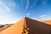 Summit of Big Daddy Dune in the morning light, Sossusvlei, Sesriem, Namibia