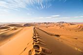 Gipfel der Big Daddy Düne mit Sicht über Dünenlandschaft des Sossusvlei, Sesriem, Namibia