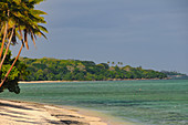 A dream beach with palm trees and lush vegetation, Yanuca Island, Fiji