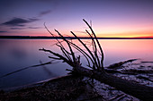 View of the Ammersee at sunset, left wooden pillar from the jetty, Bavaria, Germany, Europe