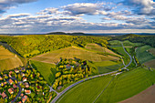 Vineyards near Castell, Kitzingen, Lower Franconia, Franconia, Bavaria, Germany, Europe