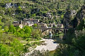 France, Lozere, the Causses and the Cevennes, Mediterranean agro pastoral cultural landscape, listed as World Heritage by UNESCO, the Gorges du Tarn, St Chely du Tarn