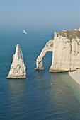 France, Seine Maritime, Etretat, Cliff of Aval and the Aiguille Creuse overflown by a herring gull