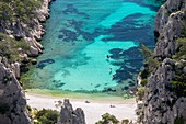 France, Bouches-du-Rhône, National park of Calanques, Marseille, 9th district, beach of creek of En-Vau