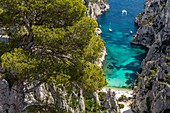 France, Bouches-du-Rhône, National park of Calanques, Marseille, 9th district, creek of En-Vau