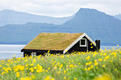 A typical house in Gjogv, Eysturoy island, Faroe Islands, Denmark, Europe