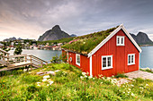 Typical Rorbu surrounded by grass, sea and mountains in background, Reine, Nordland county, Lofoten Islands, Northern Norway, Europe