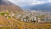 Panoramic view of Santa Perpetua church and the city of Tirano, Sondrio Province, Valtellina, Lombardy, Italy, Europe