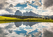Alpe di Siusi/Seiser Alm, Sassolungo and Sassopiatto Dolomites, South Tyrol, Bolzano province, Trentino Alto Adige, Italy, Europe