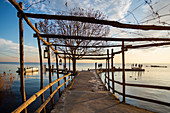 Punta San Vigilio, Verona province, Veneto, Italy, Europe. Old wooden trellis on the dock