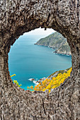 a particular shot of the cliff of the Cinque Terre, Cinque Terre national park, municipality of Riomaggiore, La Spezia province, Liguria district, Italy, Europe