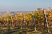Monferrato, Asti district, Piedmont, Italy. Autumn in the Monferrato wine region, Grana village\n\n