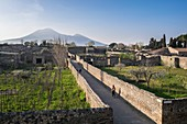 Italy, Campania region, archeological site of Pompeii listed by UNESCO as a World Heritage Site, ancient city of the Roman Empire destroyed by the eruption of Mount Vesuvius in AD 79, Mount Vesuvius in the background