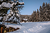 Hut in snowy winter landscape with coniferous forest at sunrise, Himmelberg, Carinthia, Austria