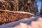 Stapel Brennholz in verschneiter Winterlandschaft mit Nadelwald bei Sonnenaufgang, Himmelberg, Kärnten, Österreich