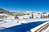 Ski area Alpe di Siusi, South Tyrol, Italy