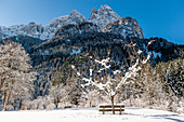 Snowy winter landscape, Bad Ratzes, South Tyrol, Italy