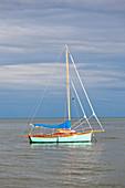 Sailboat moored at Saint Vaast la Hougue, Cotentin Peninsula, Normandy, France