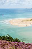 Bucht Sable d Or bei Erquy während der Heideblühte und Flut. Zwischen Cap Frehel und Cap Erquy gelegen. Bretagne, Frankreich.