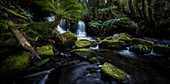 Horseshoe Falls, Mt. Field National Park, Tasmania