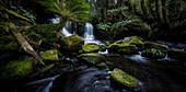 Horseshoe Falls, Mt. Field National Park, Tasmania