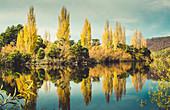 Mt.Field National Park, Tasmania