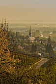Morning view of Sulzfeld am Main, Kitzingen, Lower Franconia, Franconia, Bavaria, Germany, Europe