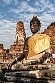 Buddha, Wat Mahatat, Ayutthaya Park, UNESCO, Ayutthaya, Thailand,