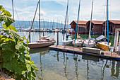 Lindau marina, Bavaria, Germany