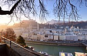 Morning view from Kapuzinerberg, city view, panorama, branches, lights, river, castle, cathedral, reflections, Stadthäuserm Salzburg in winter, Austria