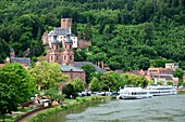 Miltenberg am Main, church, river, excursion boats, boats, forest, shore, Lower Franconia, Bavaria, Germany