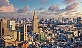 Japan ,Tokyo NTT Docomo tower and central Tokyo