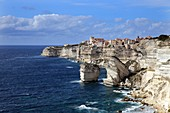 Cliff line with the houses of Bonifacio during sunny weather, Corsica, France, Europe