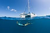 Snorkeling at French Polynesia, Apataki Atoll, Tuamotu Archipel, French Polynesia