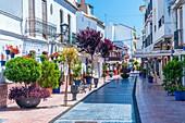 Estepona, Andalucia, Spain, Europa