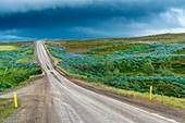 Road 54, Budardalur, Western Region, Iceland