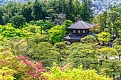 Kyoto Japan. Kennin-ji shrine precinct. Silver Pavilion