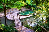 Swimmingpool in the tropical nature of Topes de Collantes, Trinidad, Republic of Cuba, Caribbean, Central America.