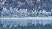 Winter at the Offensee near Ebensee, Upper Austria, Austria.