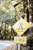 """Pedestrians Crossing"" in Pfeiffer Big Sur State Park, California, USA."
