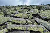 View of the granite blocks on the summit of Lusen in the Bavarian Forest National Park, Lower Bavaria, Bavaria, Germany, Europe