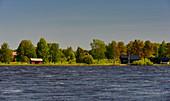 Summer huts and forests in Finland, Torneälv, near Haparanda, Norrbottens Län, Sweden