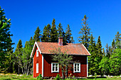 A small, red, typical Swedish house with a garden, near Ned Bäck, Västerbottens Län, Sweden