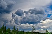 Dark rain clouds over the forest, near Roskmora, Örebro Province, Sweden