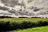 Gewitterstimmung über dem Feld, Dorum, Niedersachsen, Deutschland