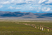 The Ungut complex, a Turkik monument ensemble consisting of man stones and numerous tombs from the 6-8th centuries AD, in Hustain Nuruu National Park, Mongolia.