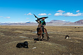 A Kazakh eagle hunter on horseback with his Golden eagle (Aquila chrysaetos) in the Sagsai Valley in the Altai Mountains near the city of Ulgii (Ölgii) in the Bayan-Ulgii Province in western Mongolia.